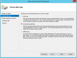 Hyper-V Manager - VM Settings - New Virtual Hard Disk Wizard - Disk Type