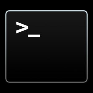 Bash Icon Logo